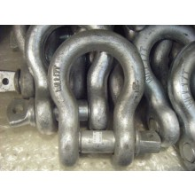 "1-1/2"" Shackle  17T  187,000lbs"