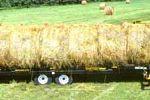 14 Bale Transport